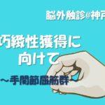 2019.6.30(日)『巧緻性獲得に向けて①』脳外触診@神戸実技セミナー