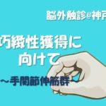 2019.9.22(日)『巧緻性獲得に向けて②』脳外触診@神戸実技セミナー