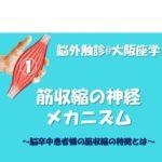 *満員御礼  2019.6.9(日)『筋収縮の神経メカニズム』脳外触診@大阪座学