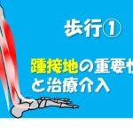 2019.5.26(日)歩行においてなぜ踵接地(H.C)が必要なのか@名古屋