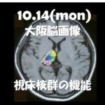 2019.10.14(月)視床障害の脳画像と治療のための機能解剖
