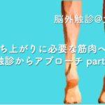 2019.8.4(日)立ち上がりに必要な筋肉への触診からアプローチ@大阪実技セミナー