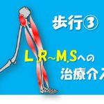 2019.8.12(月祝)L.Rでみるべき重心移動のメカニズム@大阪