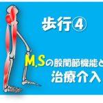 10.19(土)MStにおける股関節機能の重要性~立脚期の安定性における股関節機能への治療介入~@大阪