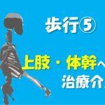 12.1(日)歩行における体幹・上肢機能の重要性~バランス制御にかかわる上肢・体幹の治療介入~@大阪