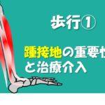 2020.8.29 歩行においてなぜ踵接地(H.C)が必要なのか IN 大阪